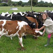 Nunton Farm